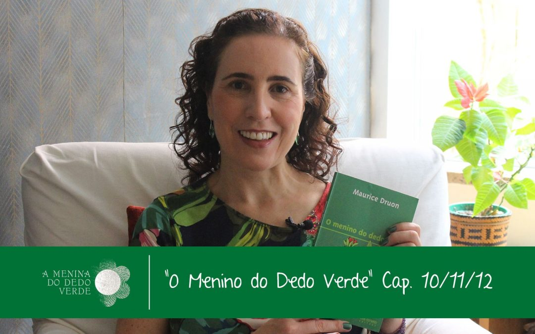 Caps 10, 11 e 12 do audiolivro O Menino do Dedo Verde