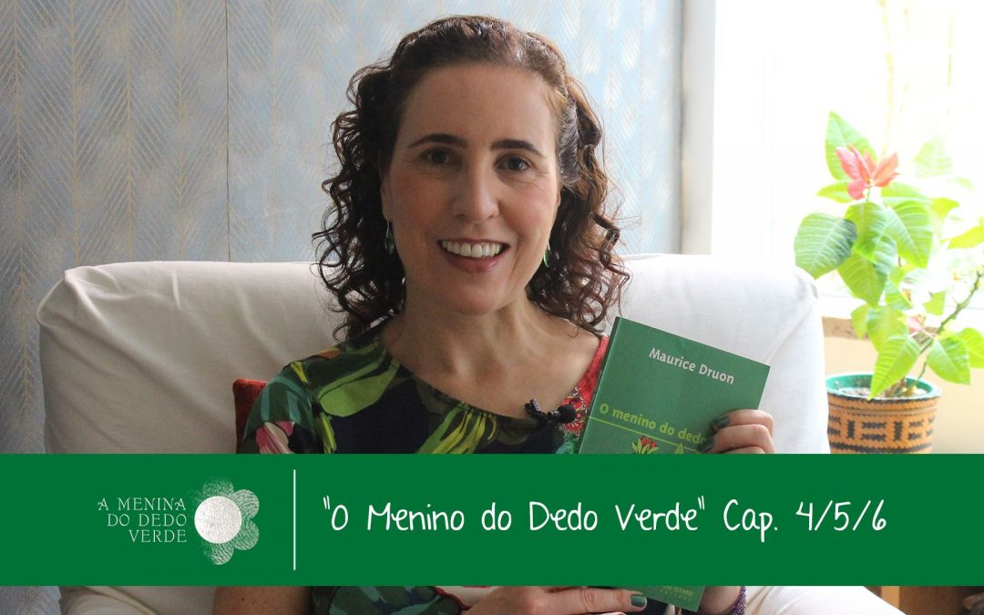 Caps 4, 5 e 6 do Audiolivro O Menino do Dedo Verde
