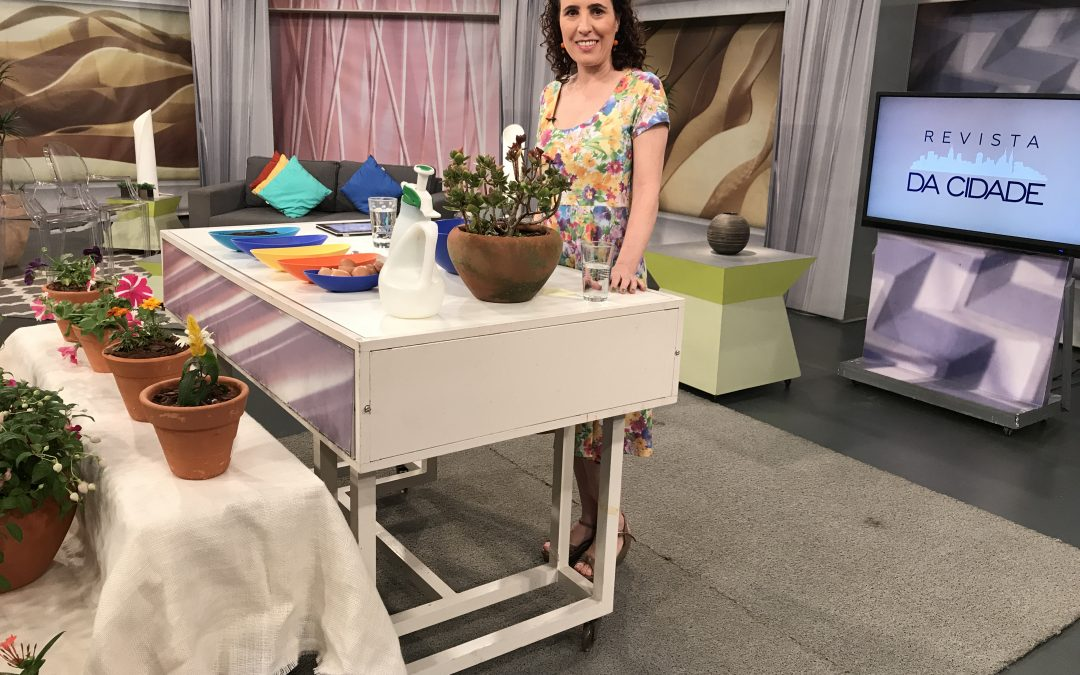 Cuidados com as Plantas na Primavera – TV Gazeta