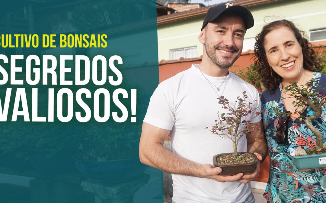 Bonsai: Invadimos o Jardim de Bonsais do Mac